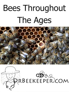 Bees Throughout The Ages-bee history