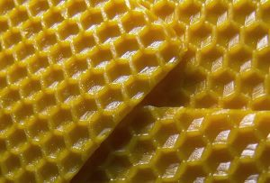 Beeswax - Superfoods