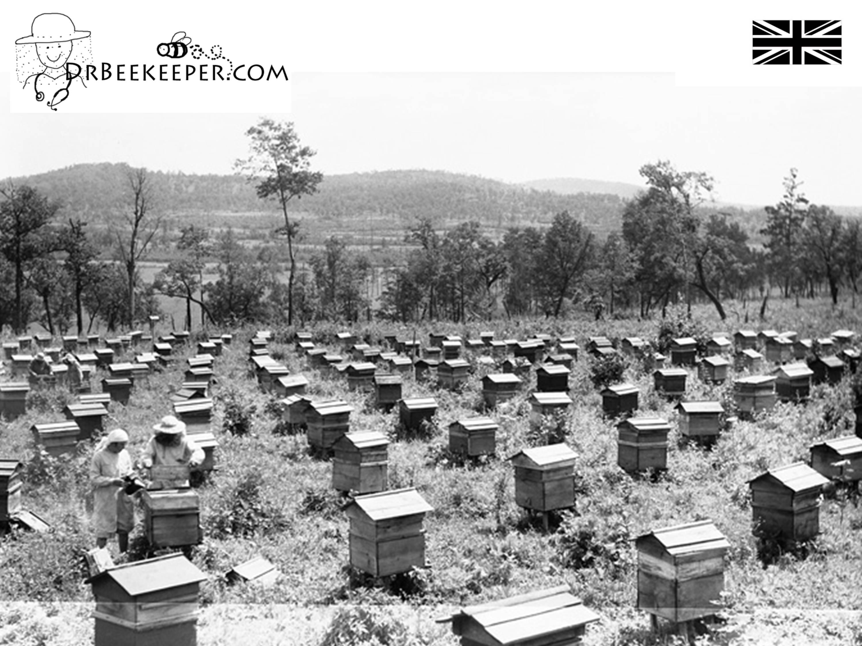 DrBeekeeper British Bee Hives