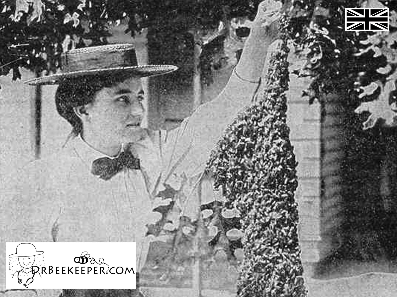 DrBeekeeper's old-fashioned beekeeper